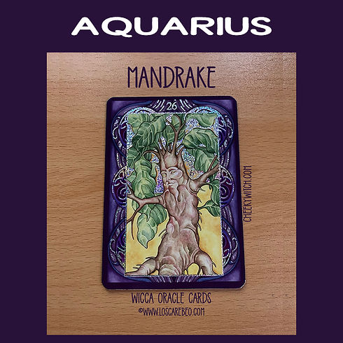 cards-feb-2021-aquarius-850-sq.jpg