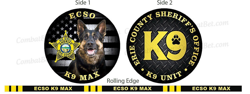 Erie County Sheriffs Office Challenge Coin (3)