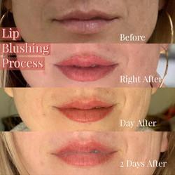 Lip Blush Progress   Bronzed Humanity