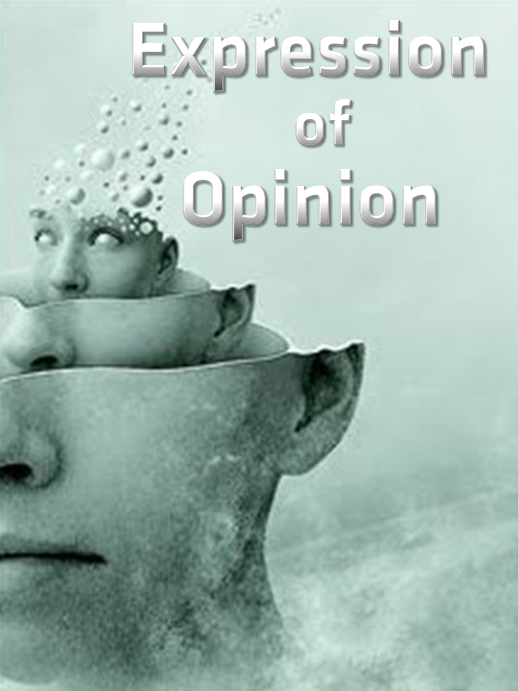 Expression of Opinion