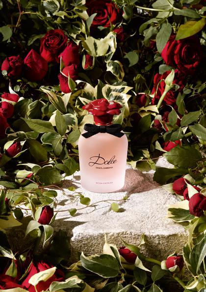 Dolce Rosa Excelsa by D & G