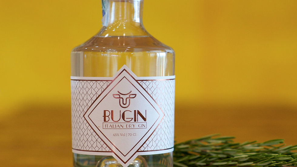 BUGIN 45% Vol | 70 cl
