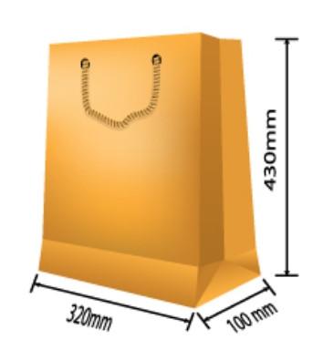 Paper Bag 005
