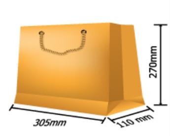 Paper Bag 004