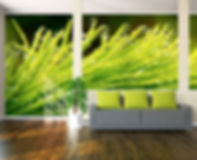 Digitally printed wallpaper and custom graphics to make murals