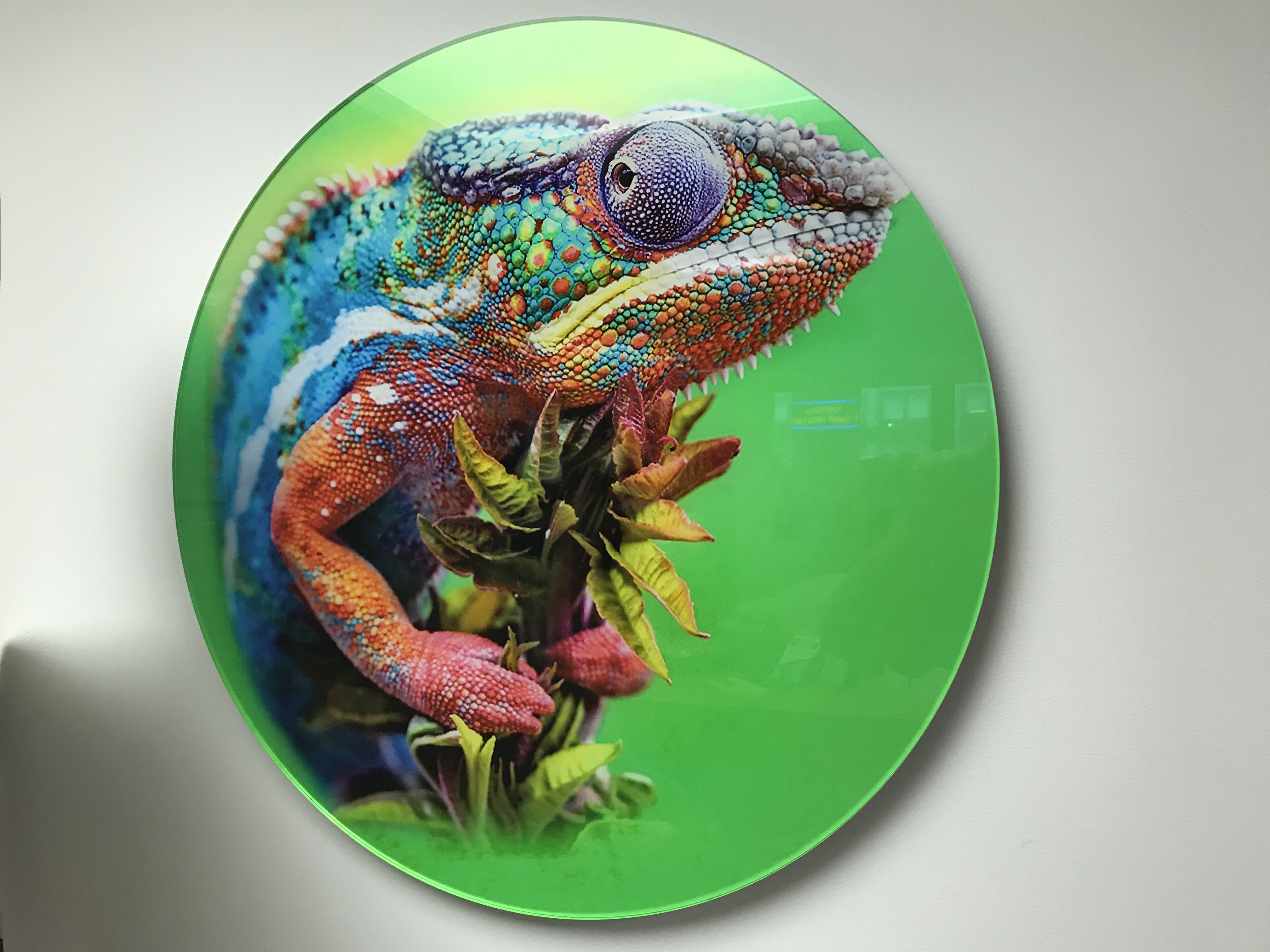 Circular plexiglass with Epson color photo