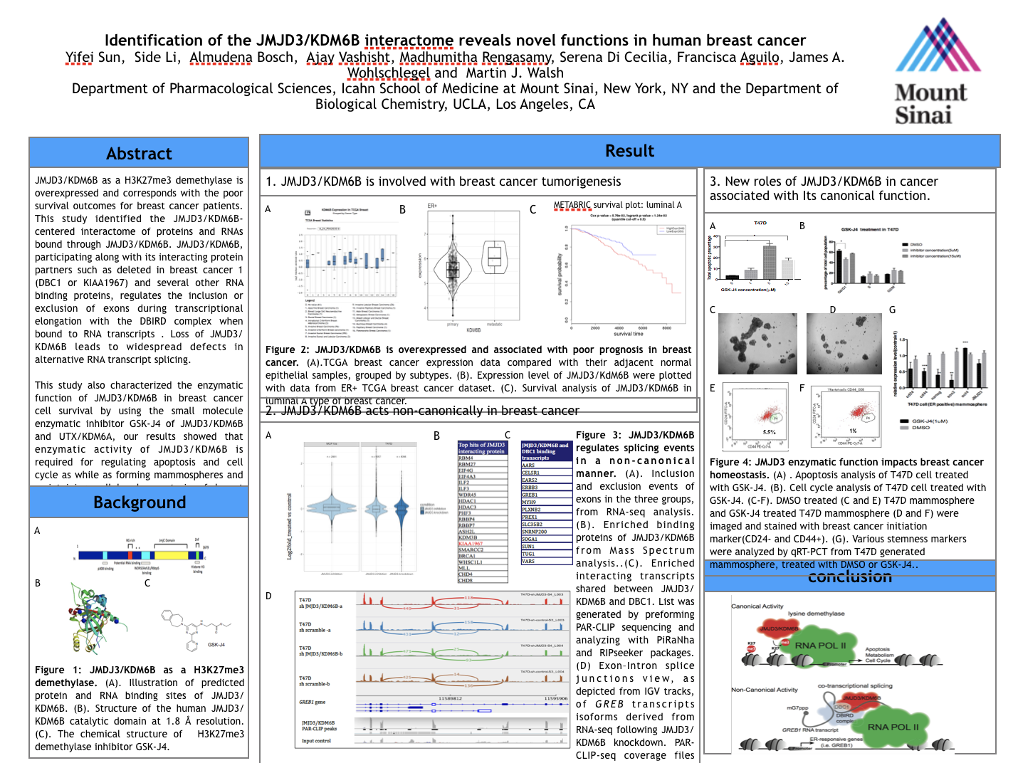 Scientific Conference Poster