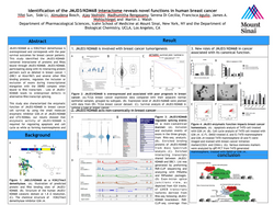 Scientific Conference Poster