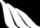 Logo M White.png