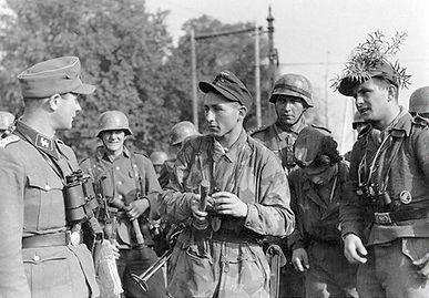 Mixed Germans Arnhem 1 96 orig.jpg