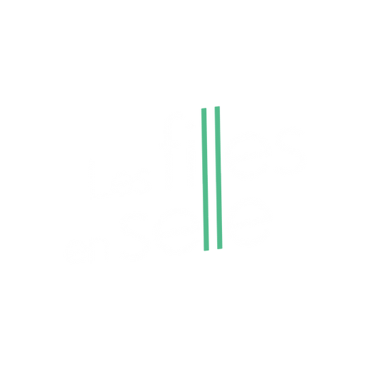 Logo Les filles en selle