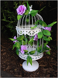 Bird Cage.png
