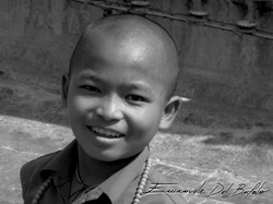 - The Young Monk -