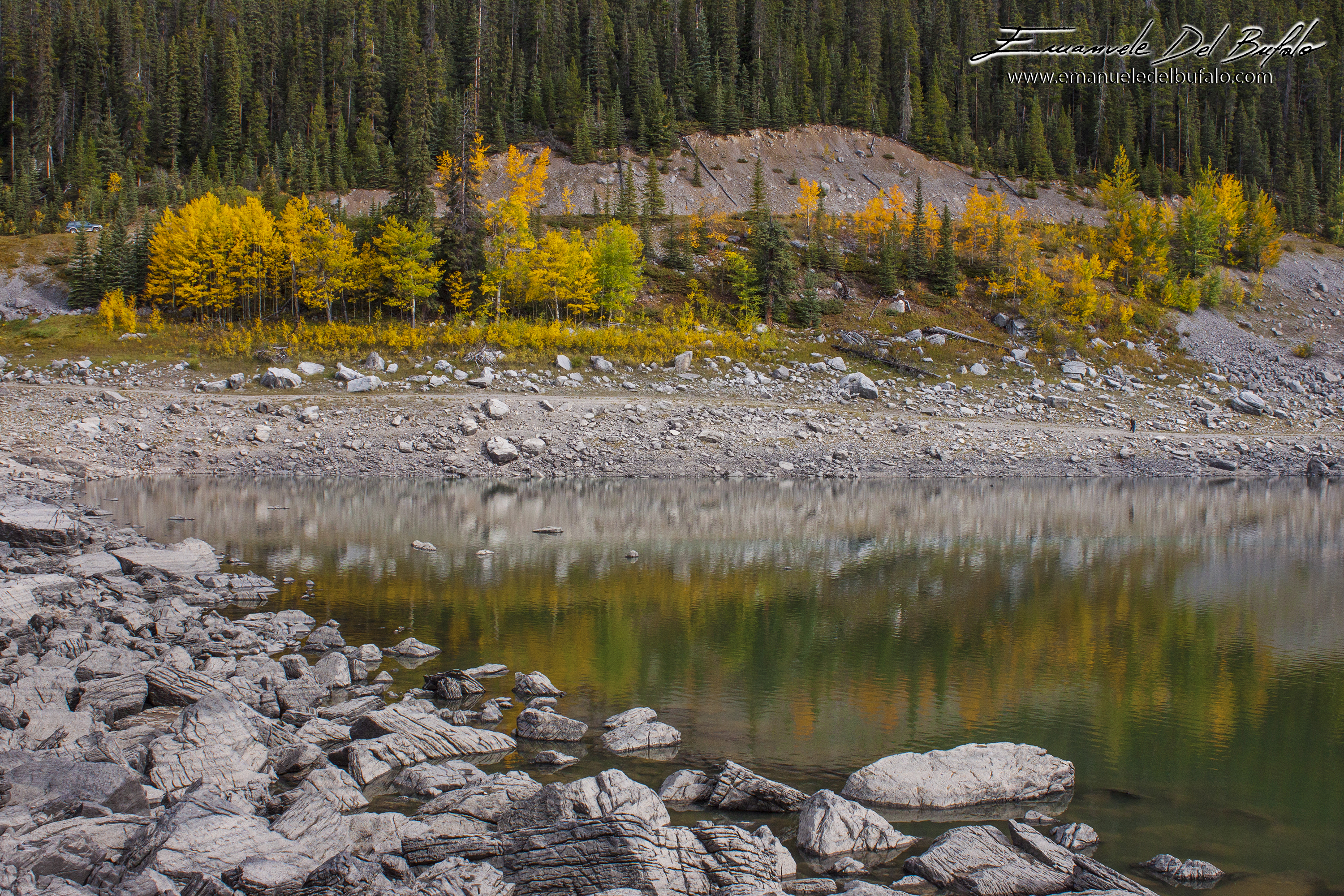 www.emanueledelbufalo.com #canada #road_trip #north #bc #alberta #autumn #yellow