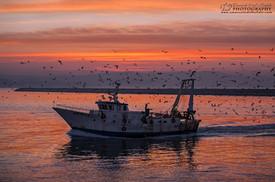 Emanuele Del Bufalo Photography COLLEZIONE DORICA_M2B5445.jpg