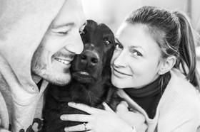 dog-family-portraits-pets-nz.jpg