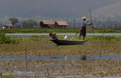 www.emanueledelbufalo.com #myanmar #burma #inle_lake #fisherman #boat #flooting_village #work #peopl