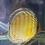 Thumbnail: Orange Manacapuru