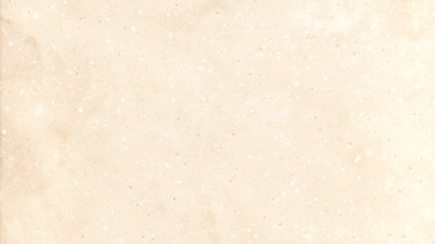 M101 Torino