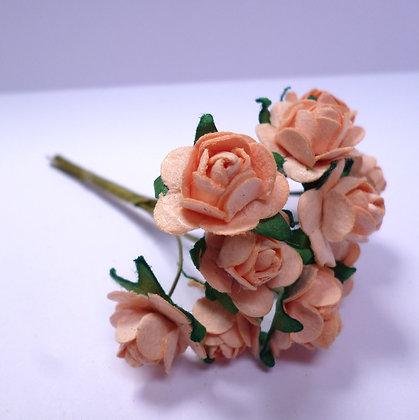 Paper Roses :: Peach