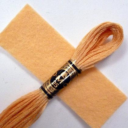 DMC Embroidery Thread :: Blossom (3856)