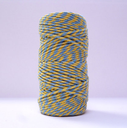 Baker's Twine MultiColoured 20m :: Yellow & Blue