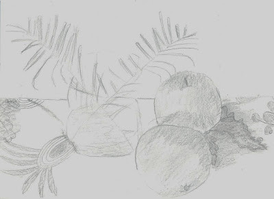 2nd Grade - Pencil Drawing
