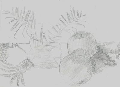 2nd Grade - Pencil Drawing