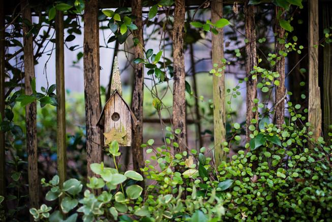 birdhouse-3.jpg