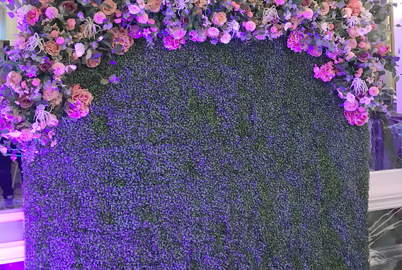 Hedge_Wall.jpg