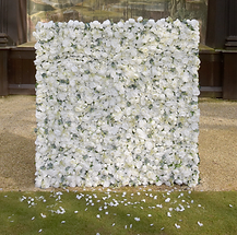 Ivory_Flower_Wall_edited_edited.png