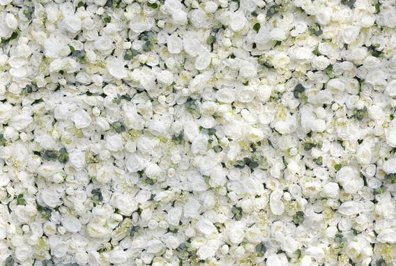 Ivory_Flowerwall_2.jpg