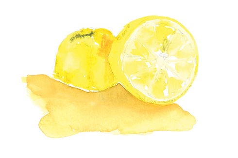 Lemon-1-EDIT-WEB.jpg