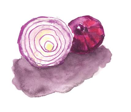 Red Onion 1.jpg