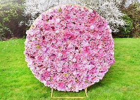 Bloomy.jpg