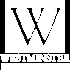 WSA_Block_White.png