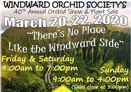 Windward orchid show.JPG