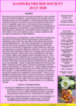 2020-07 KOS Newsletter - pg1 920w.JPG