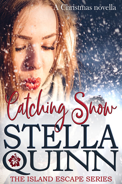 Catching snow ebook cover - 2020 version