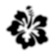 hibiscus spacer transparent png.png