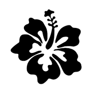 hibiscus spacer transparent png.png