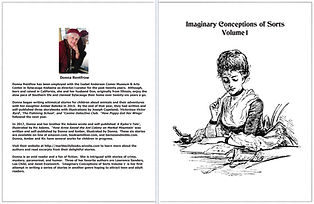 Imaginary Conceptions of Sorts Front and