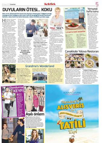 Hurriyet Kelebek_29th April 2017_Page