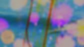 Screenshot 2020-05-10 at 12.01.48.png
