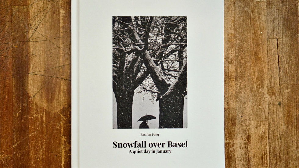 Snowfall over Basel - a quiet day in January (SOLD OUT)