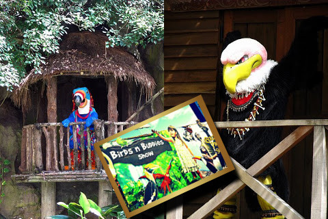 "Characters ob Set for ""Birds & Buddies"" by Pieter Grove - Jurong Bird Park, Singapore."