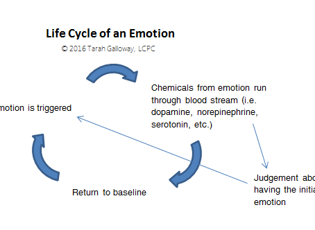 Taking Control of Your Emotions: Learn to Love Them - Part 2