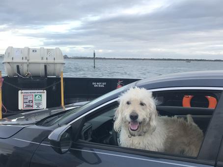 Ocracoke - Long Live Vacation
