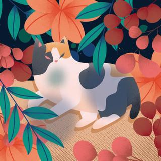 [Collaboration] Cat