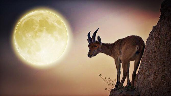 Full Moon in Capricorn, July 8-9, 2017